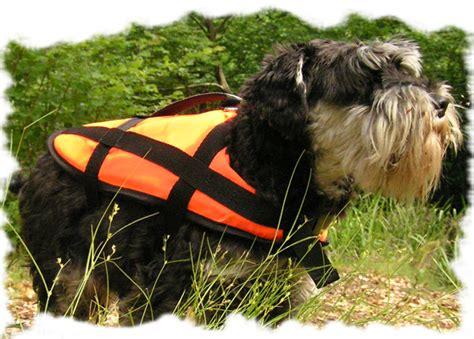 schwimmweste fuer hunde kanu funsportde