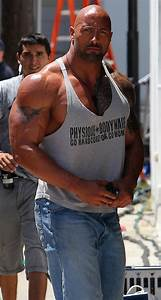 Wwe  The Rock And Steroids
