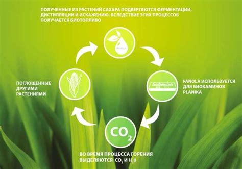 Биотопливо. Биотопливо производство и биотопливо оборудование.