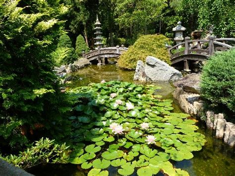 japanese like garden picture of hillwood museum