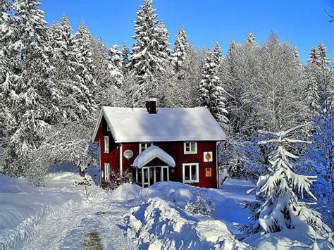 christmas houses in snow snow house pictures photos and images for and