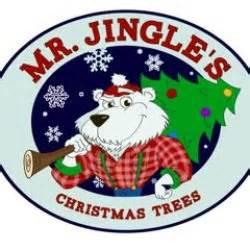 mr jingle s christmas trees littleton christmas trees littleton co photos yelp