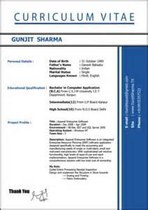 curriculum vitae dictionary definition curriculum vitae tamil