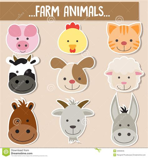set  animal faces stock vector image