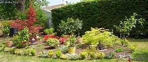 Plante Pour Jardin Japonais : jardin japonais jardin les galeries photo de plantes ~ Dode.kayakingforconservation.com Idées de Décoration