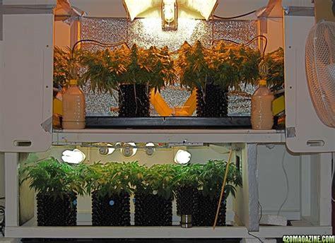Diy Grow Cabinet by Medijuana Diy Cabinet Perpetual Grow Airpots Soil W