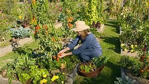 Plantes Amies Et Ennemies Au Potager : le jardin potager au grand march beauce sartigan ~ Melissatoandfro.com Idées de Décoration