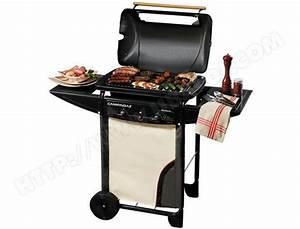 Pierre De Lave Barbecue Gaz : barbecue pierre de lave gaz weber ~ Dailycaller-alerts.com Idées de Décoration