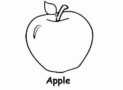 Apple Coloring Pages Tree Preschool Basket Printable