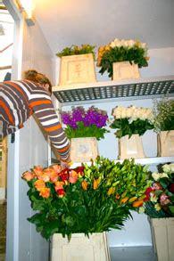 chambre climatique les étagères de la chambre climatique casaflor