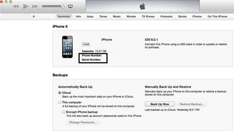iphone phone number how to find serial number imei of apple iphone on itunes