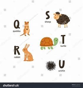 Animal Qui Commence Par U : quel animal commence par q ~ Medecine-chirurgie-esthetiques.com Avis de Voitures