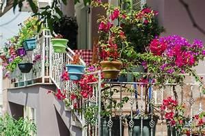 Balkon Ideen Sommer : ein paar quadratmeter gl ck wie sie ihren balkon zur oase gestalten ~ Markanthonyermac.com Haus und Dekorationen
