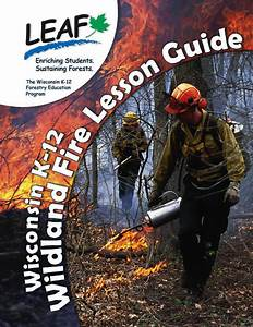 Forestry Education Curriculum For The K
