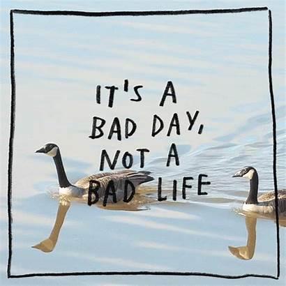 Gifs Bad Keep Perfect Spirit Better Tomorrow