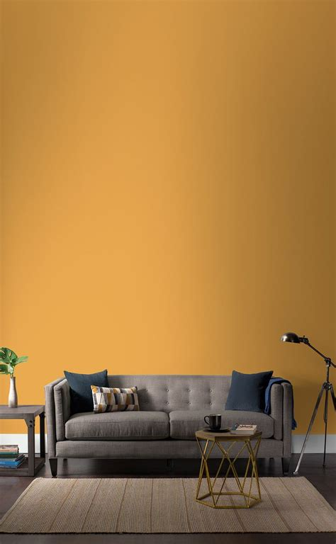 interior wall colors 24 best colonial paint colors images on