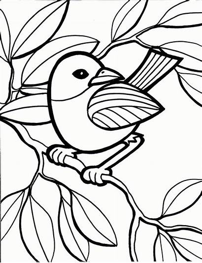 Pages Colouring Coloring Printable Paint Adults Sheet
