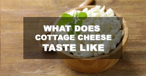 what does cottage cheese look like what does cottage cheese taste like this is what you