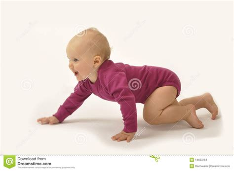 Crawling Baby Stock Images Image 14667264