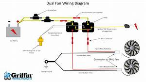 Cooper Fan Switch Diagram