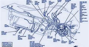 Schematic Diagram  Fuse Panel Diagram Of 1997 Ford Taurus