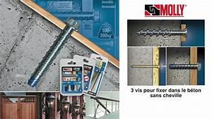 Vis A Beton : comment fixer sans cheville vis molly one pour fixer ~ Voncanada.com Idées de Décoration