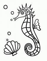 Coloring Seahorse Printable Horse Colouring Pdf Sheet Drawing Everfreecoloring Sheets Printables Templates Animal Coloringcafe Getdrawings Line Fish sketch template