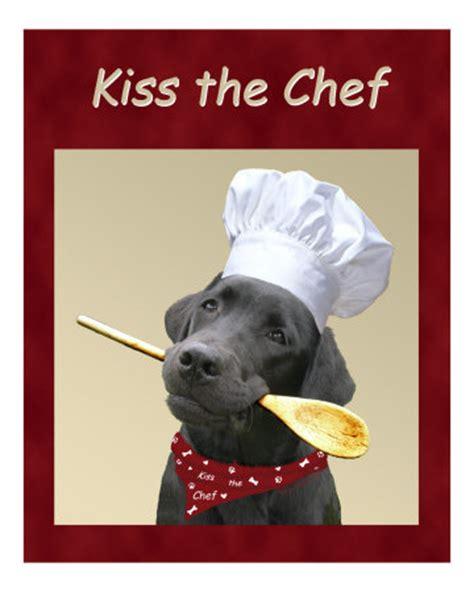 chien cuisiné quand un chien cuisine pour un at mes émotions