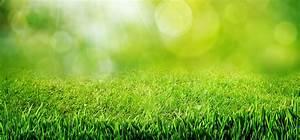 Tondeuse Pour Terrain En Pente : pelouse image ~ Premium-room.com Idées de Décoration