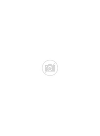 Walking Dead Daryl Dixon Dolls Paper Doll