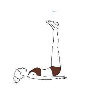 le meilleur programme d abdos pour femme comment se muscler rapidement