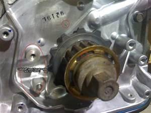B16 Timing Belt Installation
