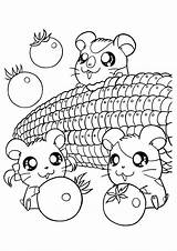 Coloring Pages Kawaii Animal sketch template