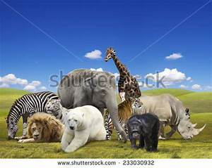Royalty-free A group of animals are together on a ...