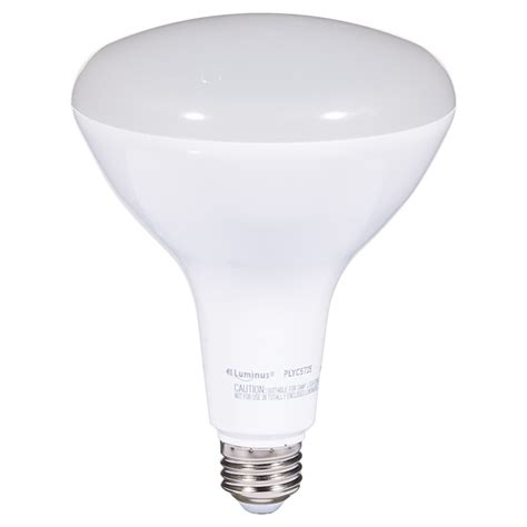 17w led dimmable br40 bulb day light rona