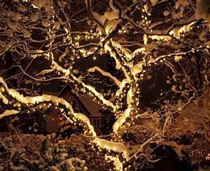 Weihnachtsbeleuchtung Außen Baum : iluminacion exterior decoracion navide a con luces ~ Orissabook.com Haus und Dekorationen