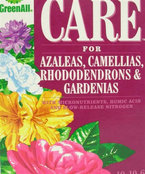greenall care for azaleas camellias rhododendrons