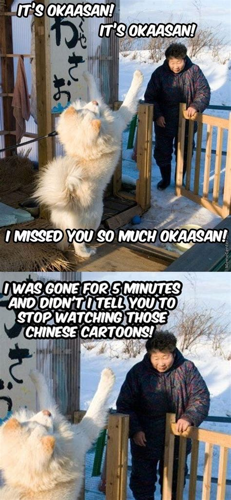 Weeaboo Memes - weeaboo dog by m h m meme center