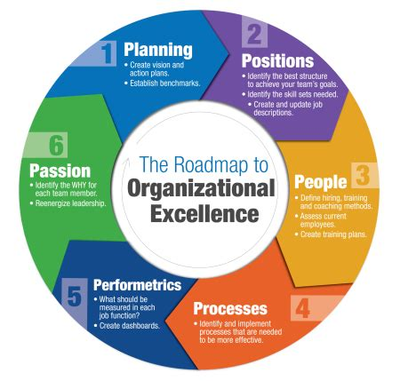 sandlers  study  leadership  organizational