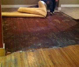 flooring how can i remove carpet adhesive from hardwood floors home improvement stack exchange