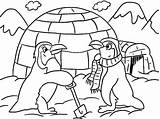 Coloring Pages Penguin Winter Printable Owl sketch template