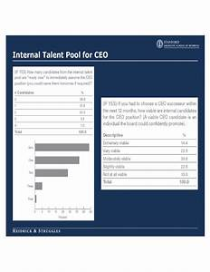 Ceo succession planning template free download for Executive succession planning template