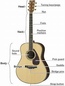 Musical Instrument Guide