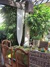 Outside - Tropical - Patio - miami tropical outdoor patio