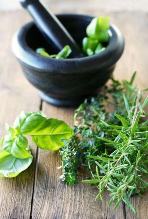 854 best en cuisine les herbes aromatiques images on