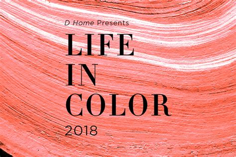 choose  life  color winner  magazine