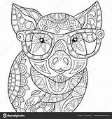 Coloring Adult Pig Glasses Relaxing Zen Wearing Pages Adults Cute Illustration Shutterstock Vector Animal Mandala Sheets Activity Sunglasses Printable Colouring sketch template