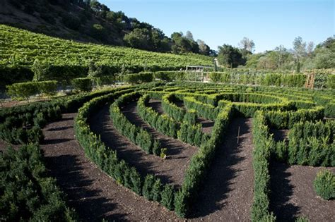 An Organic Kitchen Garden  Gallery  Garden Design