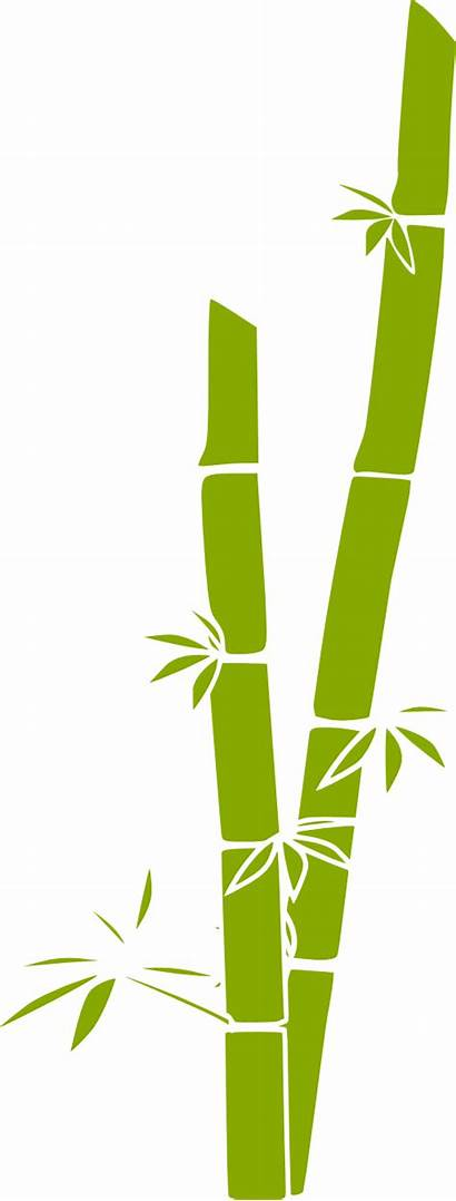 Bamboo Clipart I2clipart Domain