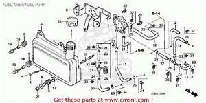 Honda Gc160vxc14zl81e4 Fuel Tank  Fuel Pump